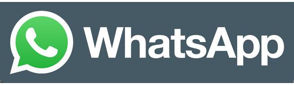 Бесплатная интеграция Whatsapp и INTRUM CRM